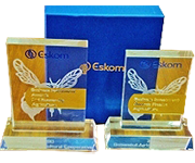 Eskom Business Investment Award